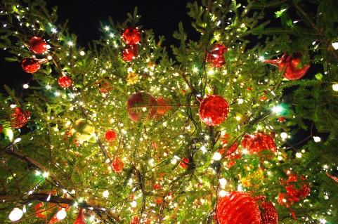 クリスマスジュエリー