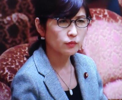 稲田朋美ネックレス