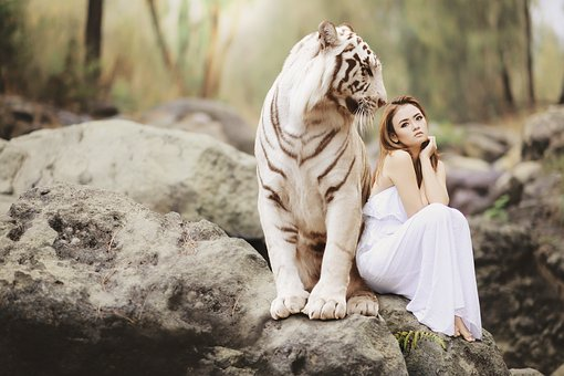 虎のモチーフジュエリー